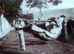 Historische Fotos von Puerto de la Cruz auf Teneriffa